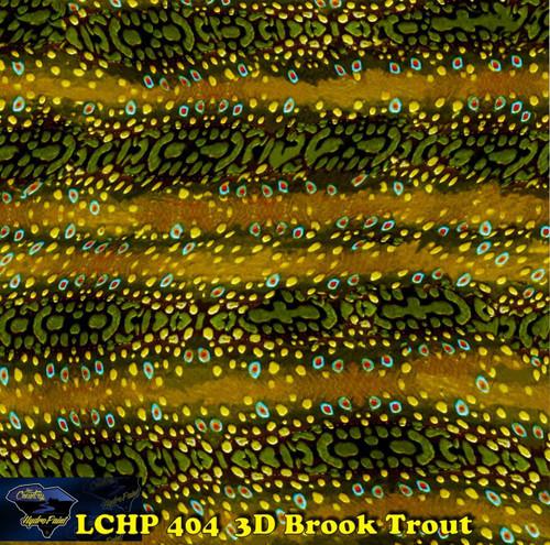 3D Brook Trout