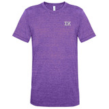 Fraternity & Sorority Embroidered American Apparel Unisex Vintage Track T