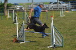 1. Beginning Agility (Mar 2 - Apr 6) - 7:30pm Tropical Park Equestrian Center - Instructor: Mike S