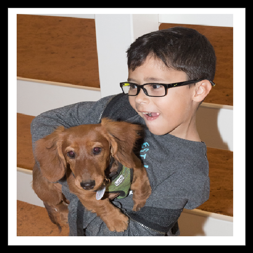 1. Puppy/Star Puppy - 6 wks - (Oct 26 - Nov 30) 6:30pm - Tropical Park -Instructor: Barbara G