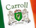 Irish Personalized Harp Flag - 3x5 | Irish Rose Gifts