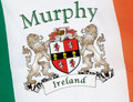Irish coat of arms Ireland Flag | Irish Rose Gifts