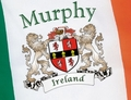 Irish coat of arms Ireland Flag | Irish Rose Gifts