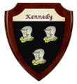 Irish Coat of Arms Shield Plaque -Rosewood Piano Finish