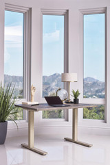 The Myers Collection Adjustable Desk