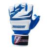 Revgear Deluxe Pro MMA Fight Gloves