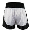 RevGear YOUTH Destroyer Muay Thai Shorts