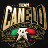 Canelo Alvarez Power Women's V-Neck Shirt