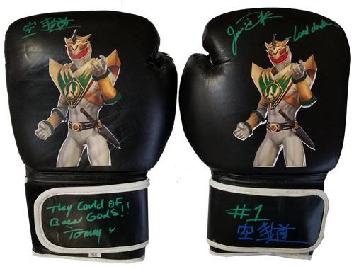 Jason David Frank Autographed Lord Drakkon Gloves 1/1