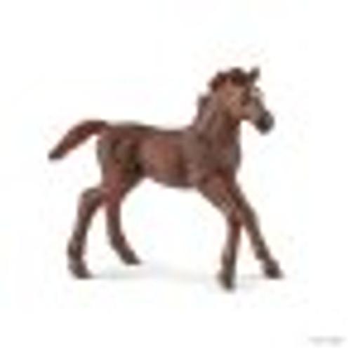 Schleich English Thoroughbred Foal (13857)