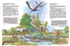 The Devotional Children's Bible for Ages 3-11(Hardcover)