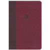 NKJV Spirit-Filled Life Bible - BURGUNDY Leathersoft with Indexed. 10pt type with Red Letter. Revised & Updated Third Edition, by Jack W. Hayford.