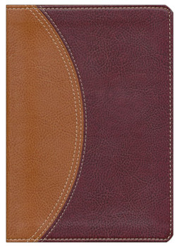 NIV Study Bible: Compact, Indexed.  Tan-Burgundy Leathersoft Color on every page