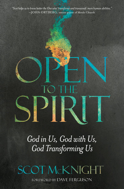 Open To The Spirit: God In Us, God With Us, God Transforming by Scot McKnight