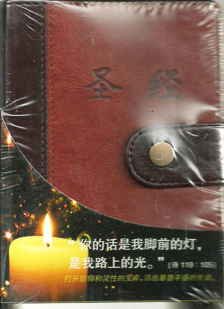 Bible in simplified Chinese, small size, indexed with pen / 圣经