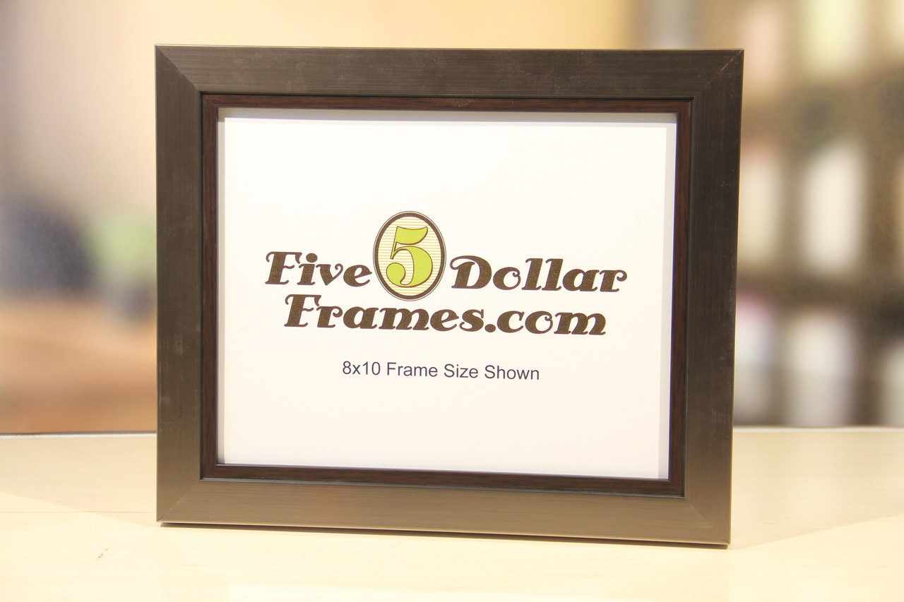 Brushed Silver With Walnut Lip Contemporary Picture Frame