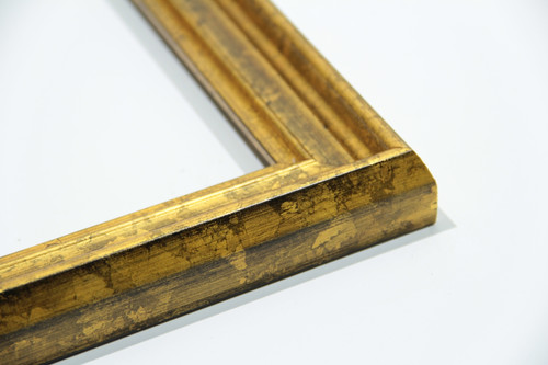 Tradional Gold w/Waterstain Picture Frame