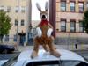 American Made Giant Stuffed Kangaroo 42 Inches Tall Big Plush Animal Soft Made in the USA America