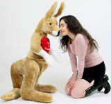 Big Stuffed Kangaroos