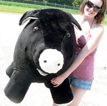 Colors Black Color Big Stuffed Animals Big Plush Personalized