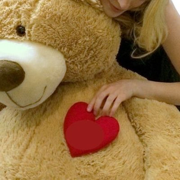 Add a Plush Heart - WE WILL ATTACH IT TO YOUR STUFFED ANIMAL