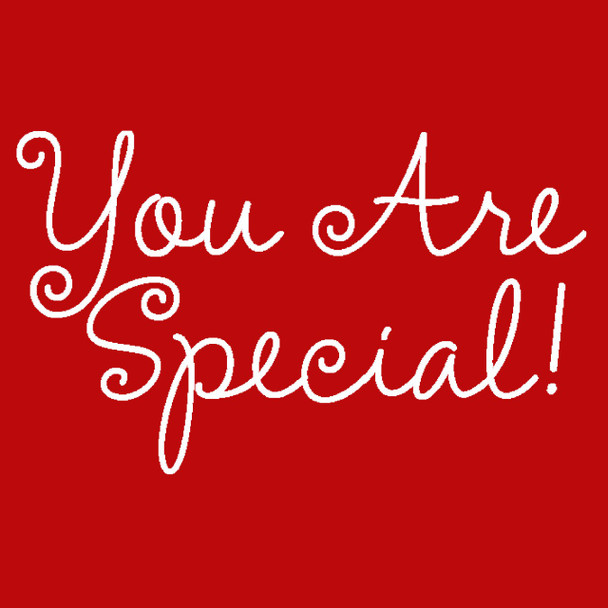 It's FREE to ADD this T-Shirt Design -YOU ARE SPECIAL - We'll Dress-Up your Stuffed Animal in this T-Shirt