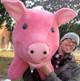 Big Stuffed Pigs