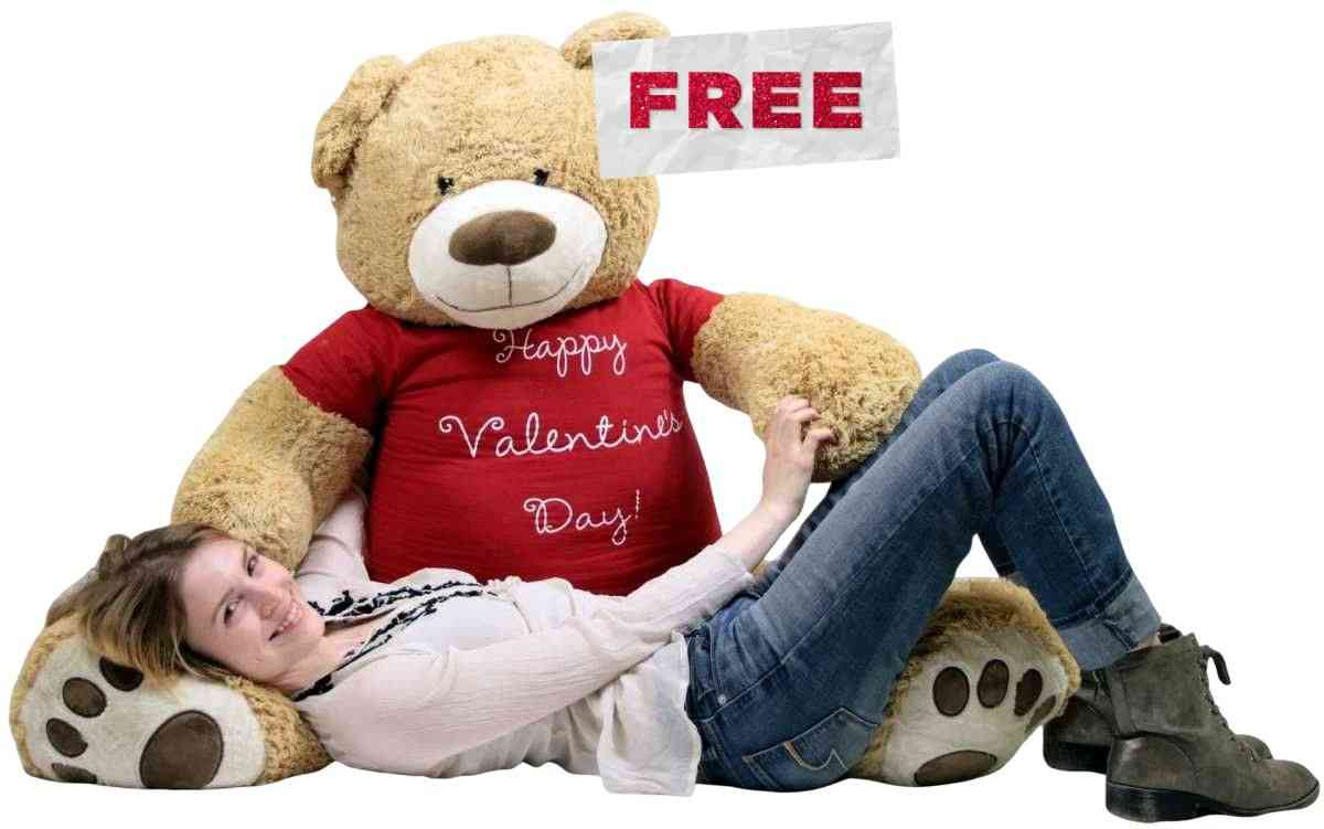 Its free and easy to pick a message t-shirt and have it worn by any Big Plush stuffed animal or teddy bear that you like. Learn more here.