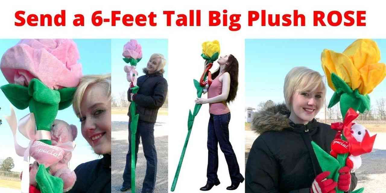 Be a hero and send a Big Plush Rose that is 6 feet tall. These huge giant roses ship in an enormous box that measures six feet long. This will make the perfect gift when you want to make a big impression.