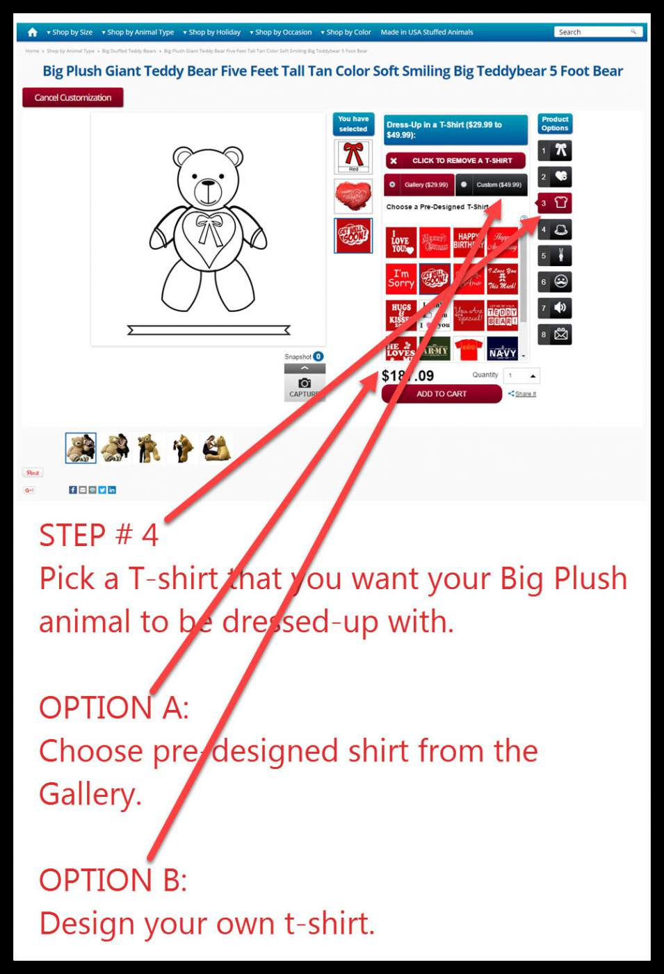 step-4-how-to-customize.jpg