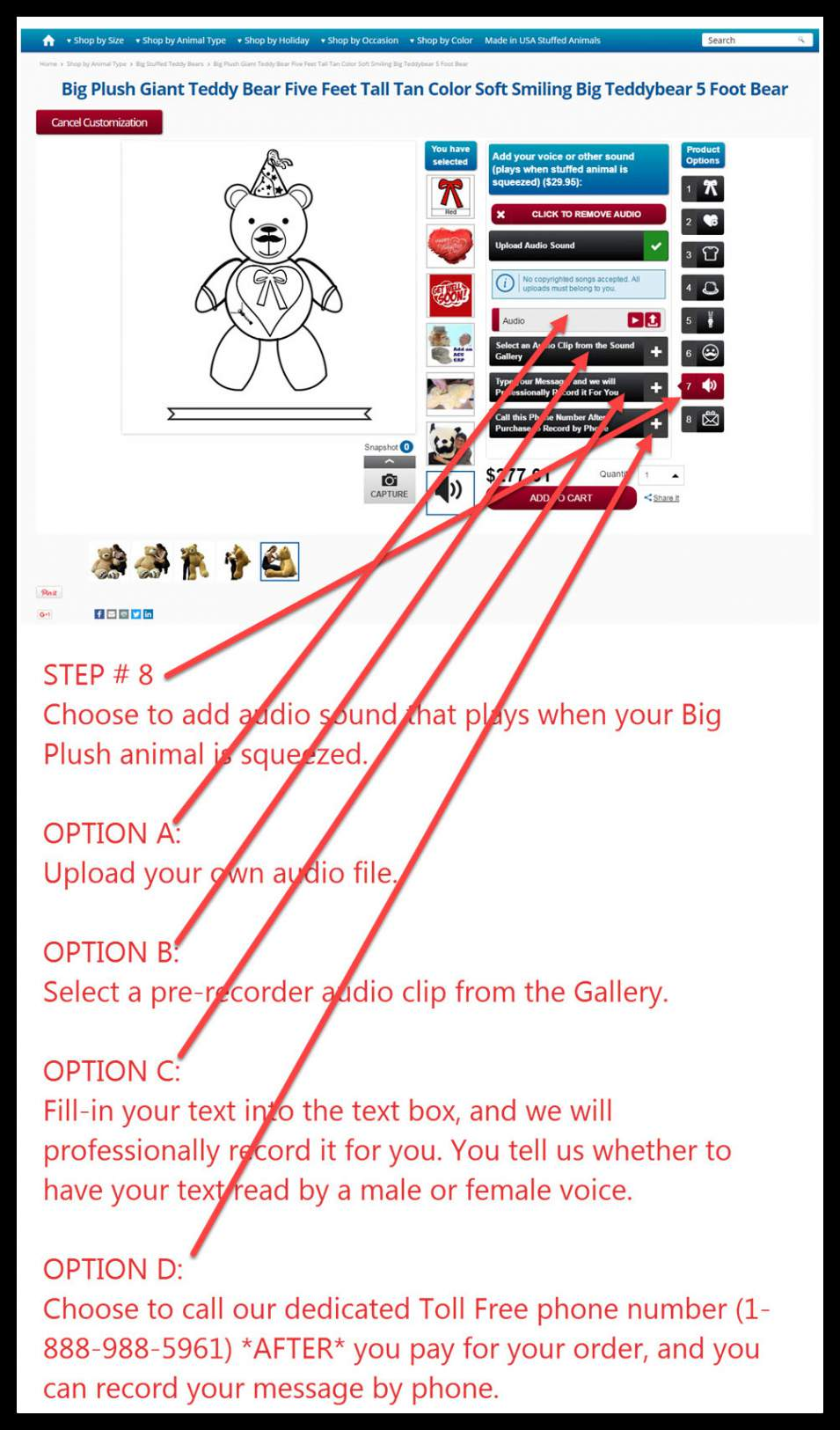 step-8-how-to-customize.jpg