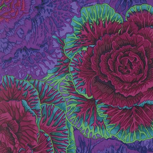 Brassica Philip Jacobs Colour: purple