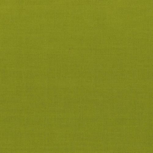 Painter's Palette by Paintbrush Studio Fabrics Wasabi Jacquie Gering Favourite's Collection