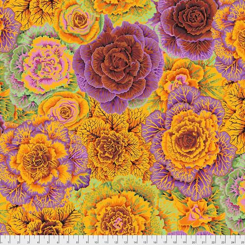 Brassica Philip Jacobs Colour: Orange