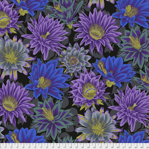 Cactus Flower Black