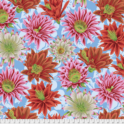 Cactus Flower - Multi Philip Jacobs, Kaffe Fassett Collective