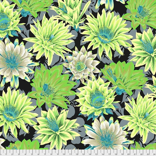 Cactus Flower - Contrast Philip Jacobs for the Kaffe Fassett Collective