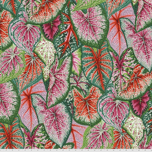 Caladiums - Red Philip Jacobs for the Kaffe Fassett Collective PWPJ108.RED
