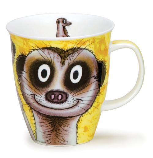 Nevis Go Wild Meerkat