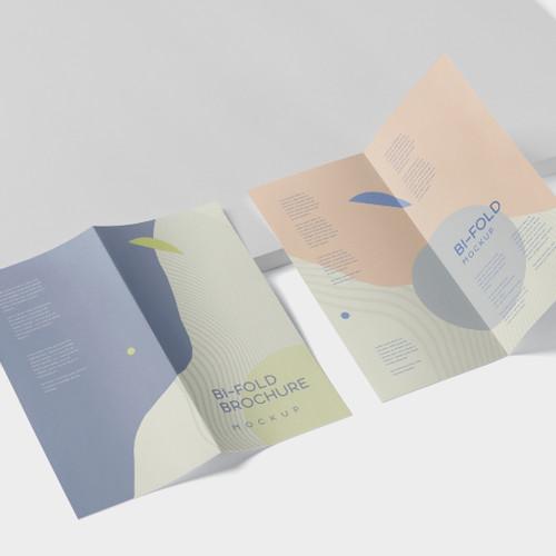 DL Folded Brochures