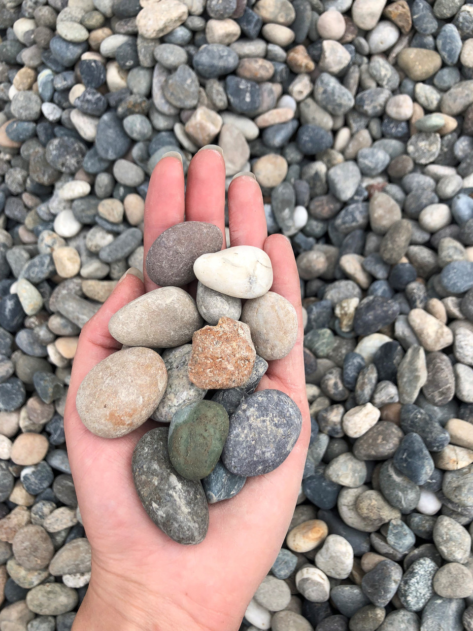 "1"" River Rock"