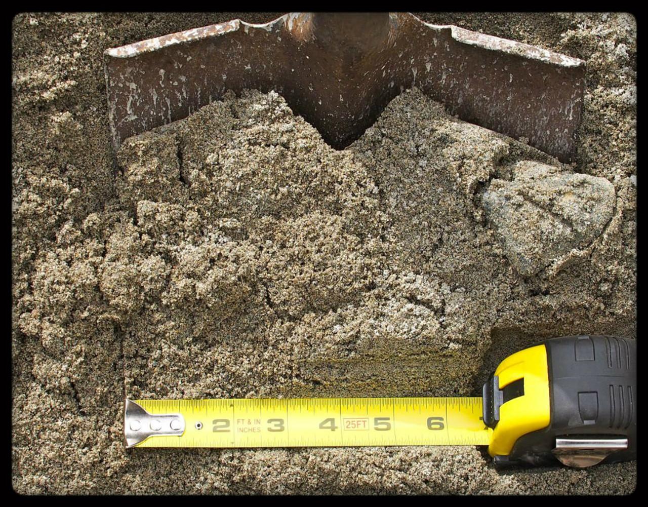 Washed Sand scale photo - MyGardenBag