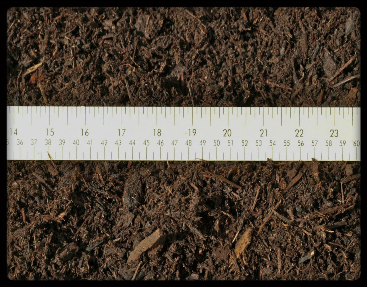 "Bark Mulch - Scale view showing 1"" minus"