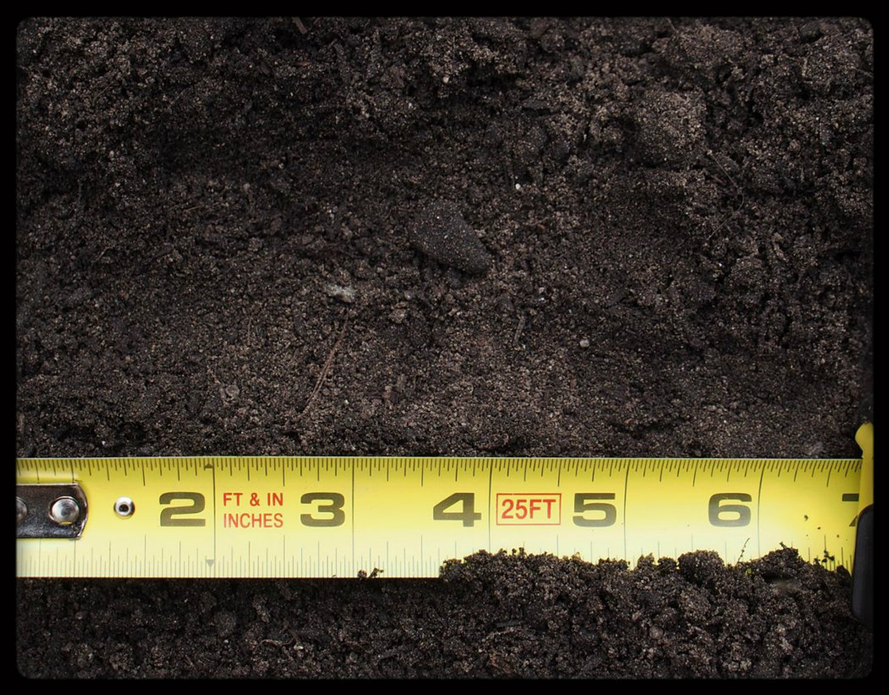 Turf Blend Soil scale photo