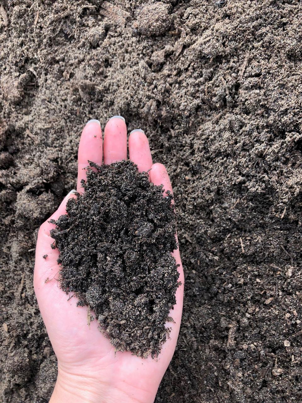 Turf Blend soil