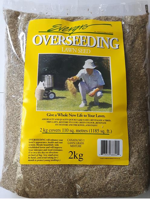Overseeding grass seeds 2 kg.