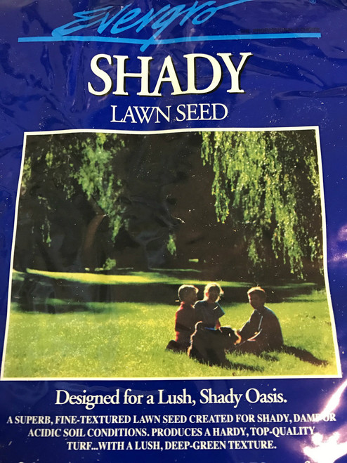 Shady grass seeds 2 kg.