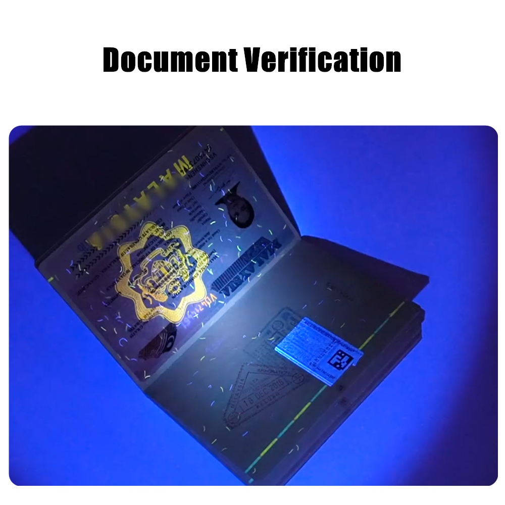 document-verification.png