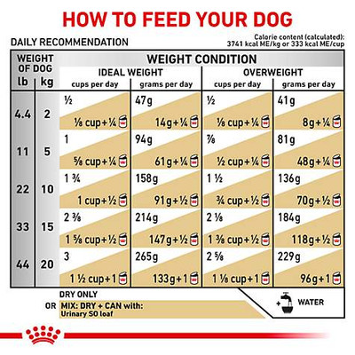 Royal Canin Veterinary Diets Urinary SO Dry Dog Food (6.6 lb)