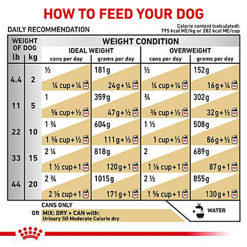 Royal Canin Veterinary Diet Urinary SO Moderate Calorie MIG Canned Dog Food (24/13 oz Cans)